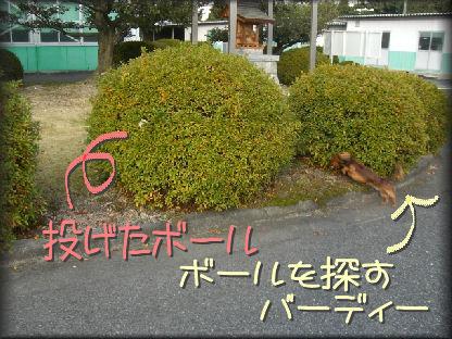 09121315.jpg