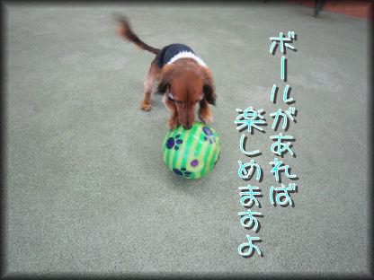 10011333_20100117214951.jpg