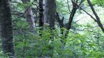 2010_0810_120236-DVC00093.jpg