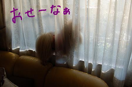 1DSC_6199.jpg