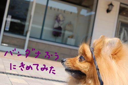 2DSC_7805.jpg