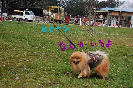 2DSC_7909.jpg