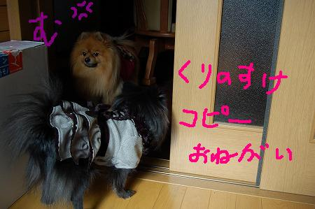 3DSC_5789.jpg
