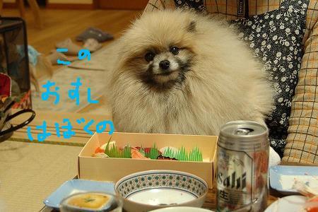 3DSC_6721.jpg