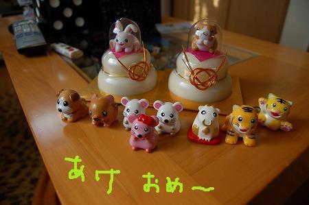 DSC_3699.jpg