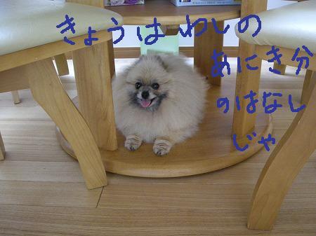 s-DSCN6705.jpg