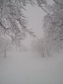 20110124-01.jpg