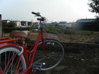 1031自転車