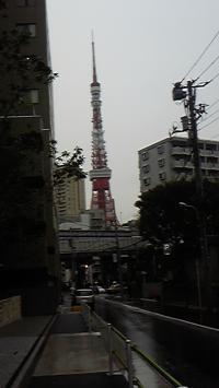 11-17雨のタワー