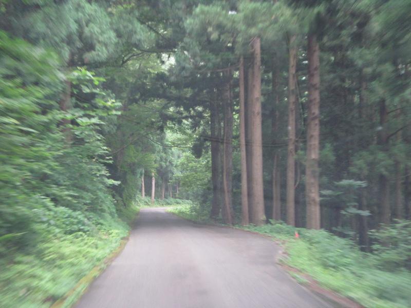 ヒスイ峡へ向かう道3