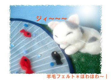 ネコと魚2
