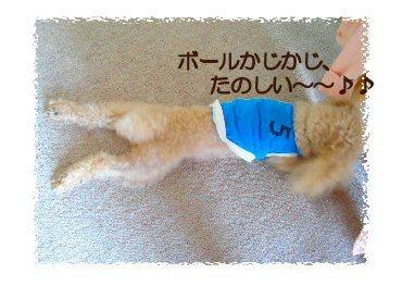 編み物ボール3
