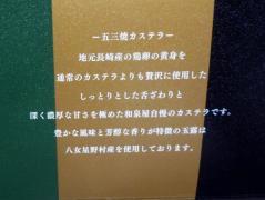 2010_0411_162337-P1190718.jpg