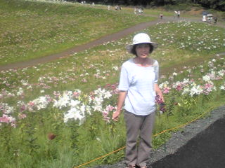 函館山」のユリ園