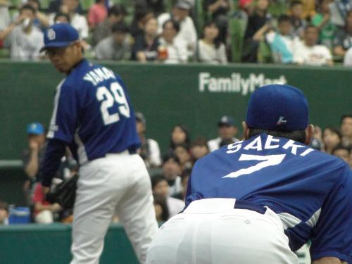 yamaisaeki.jpg