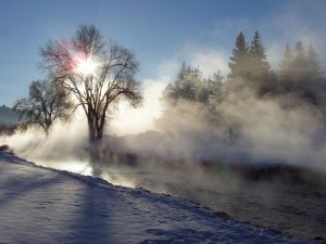 17911_misty_morning.jpg