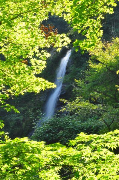3大樽の滝