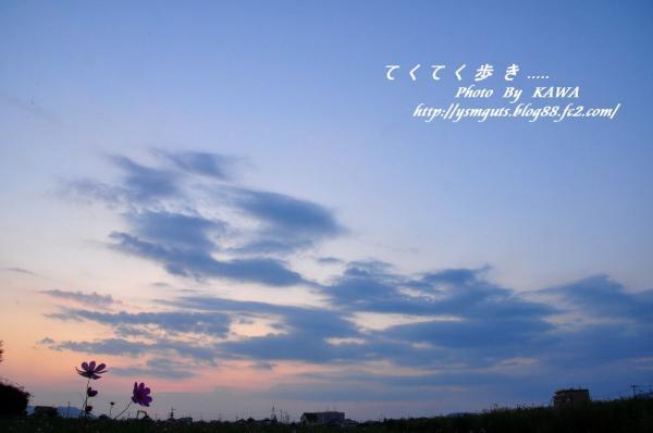 4見奈良_1494