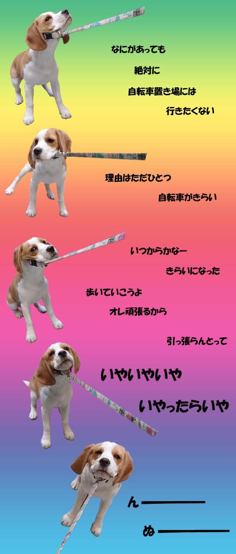 FUNBARIMOKU2.jpg