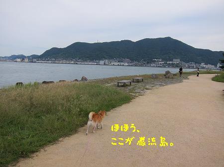 1IMG_3667.jpg