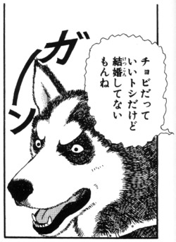 cyobi.jpg