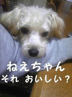 091031_074516_ed_ed.jpg