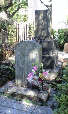青山墓地 ヘンリー側から見たよ