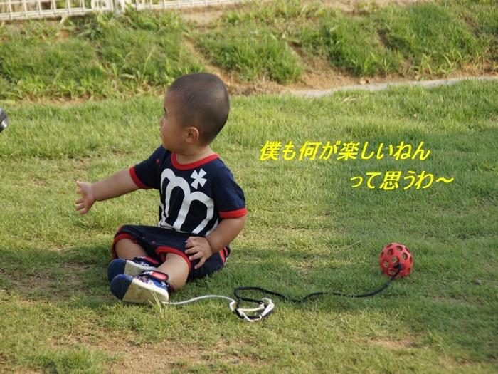 10_20110727204133.jpg