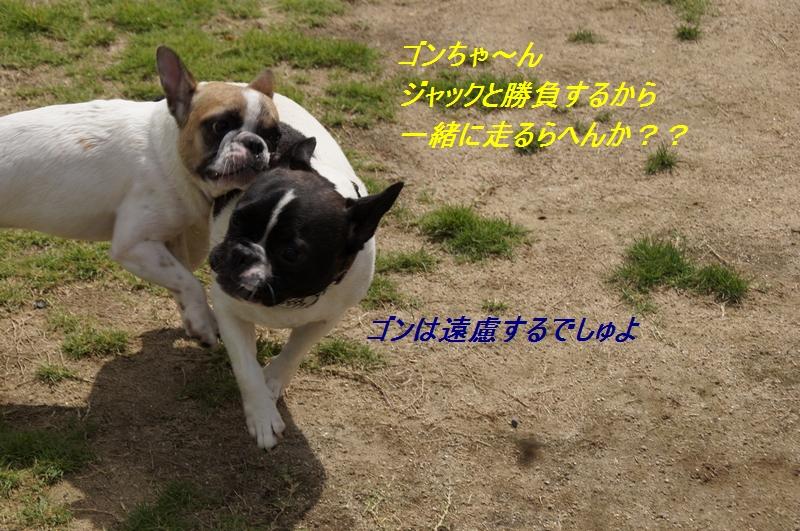 10_20110913174216.jpg