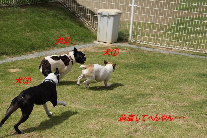 11_20110913174911.jpg