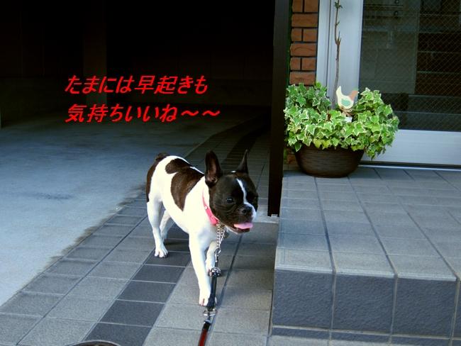 12_20110829113808.jpg
