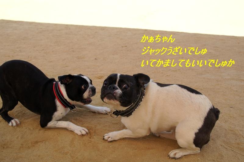 15_20111002223057.jpg