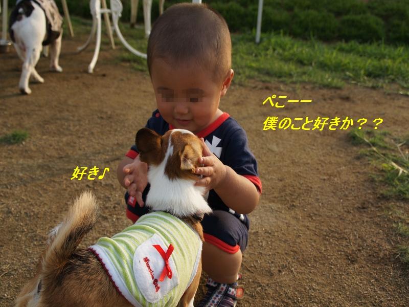 16_20110727205402.jpg