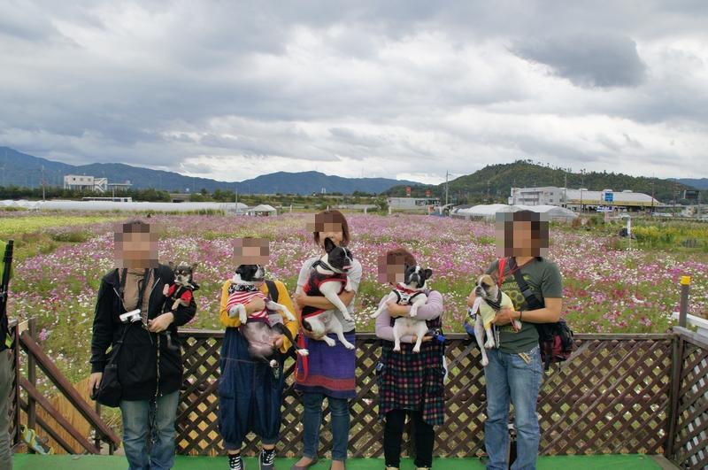 16_20111024120505.jpg