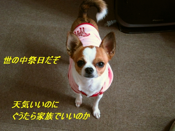 1_20111014084550.jpg