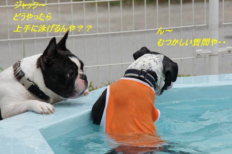 20_20110712204642.jpg