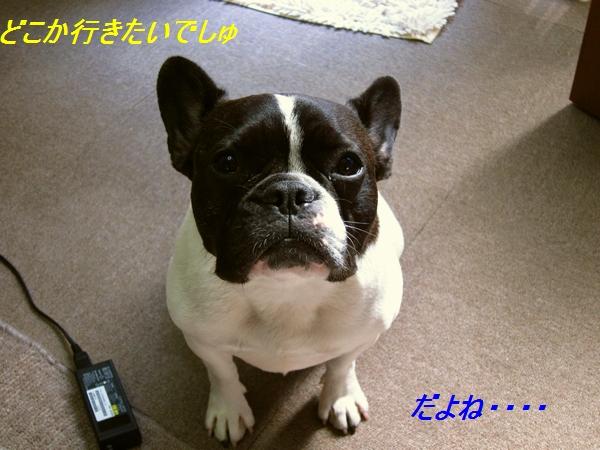 2_20111014084550.jpg