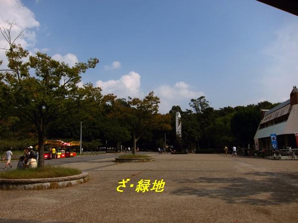 3_20111014084549.jpg