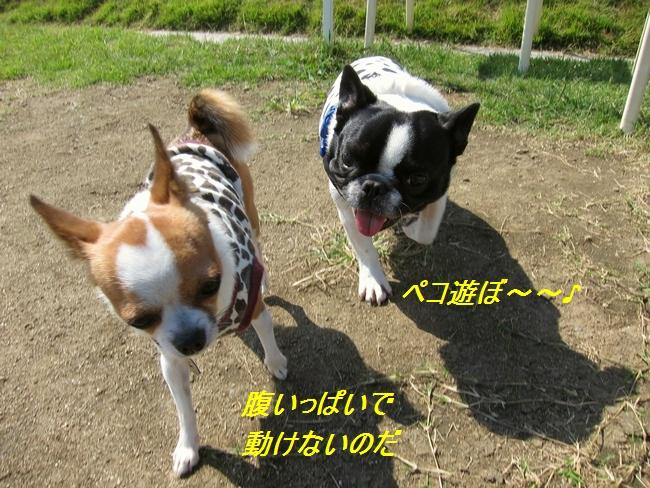 7_20111011224835.jpg