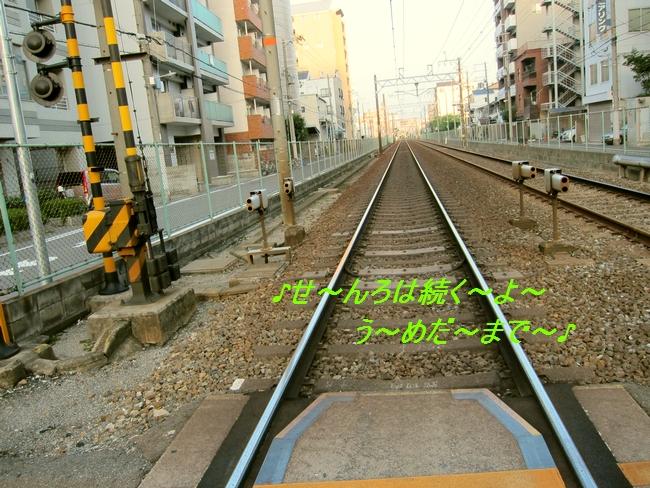 8_20110829113526.jpg