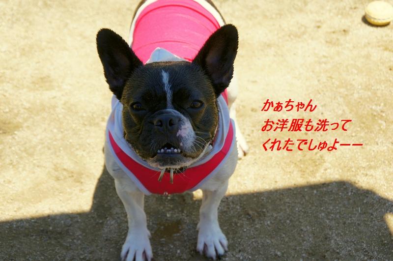 9_20110712203119.jpg