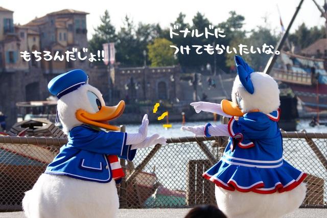 330_20110110182439.jpg