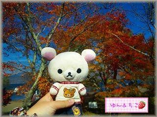 ちこちゃん日記★69★小さい秋み~つけた♪-1