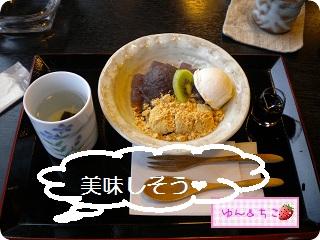 寅コリちゃんの初お出かけ♪-1