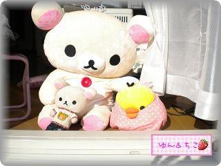 ちこちゃん日記70★日向ほっこ日和★ー1