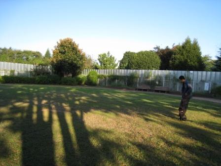 芝生のある公園