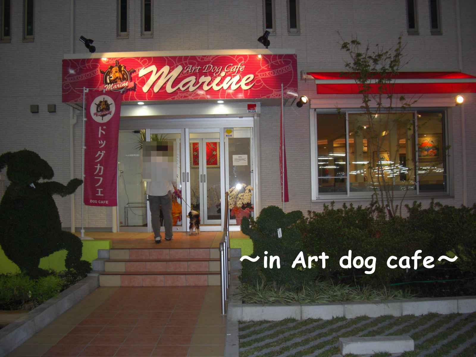 アート ドッグ カフェ1