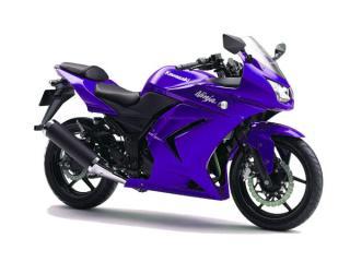紫Ninja
