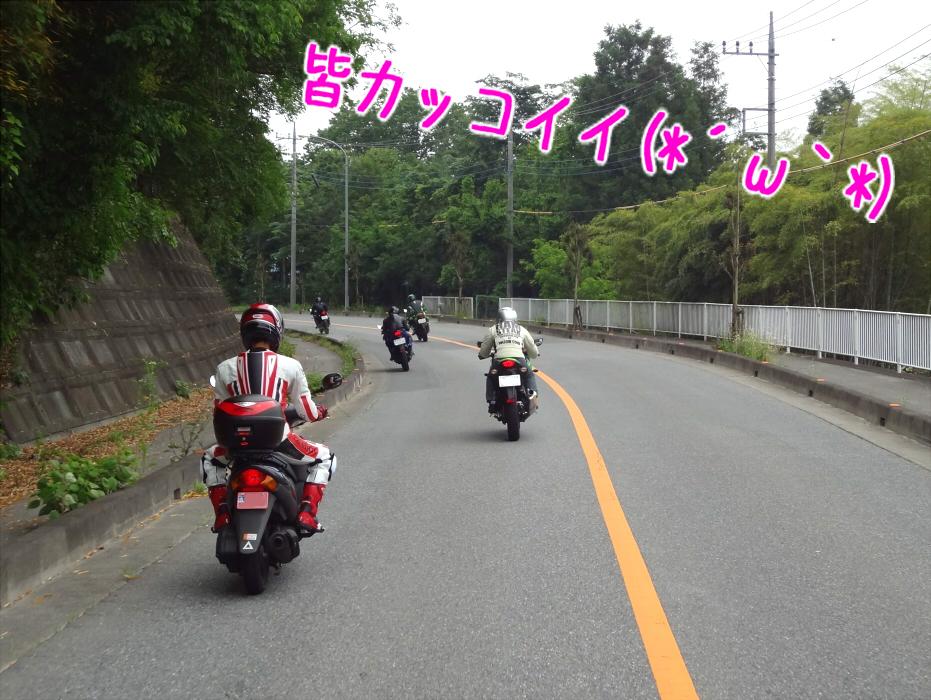 DSC01597.jpg