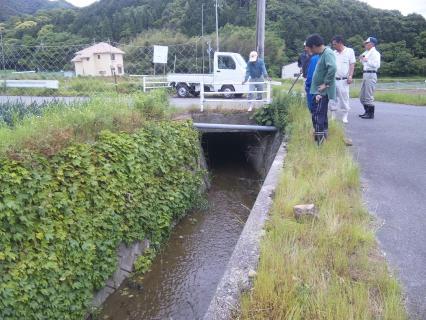 水路点検1